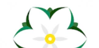 logo bunga melati apk pinjaman